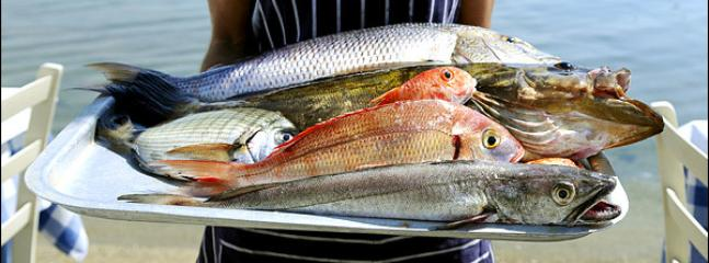 Restaurants with fresh fish