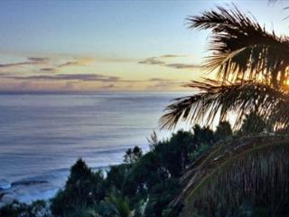 Poipu Kapili 46: spacious, great view, close to beach in sunny Poipu + A/C