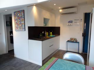 Central Nice Stylish A-C One-Room Flat