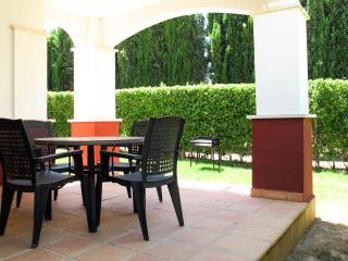 Rear Patio and Garden.