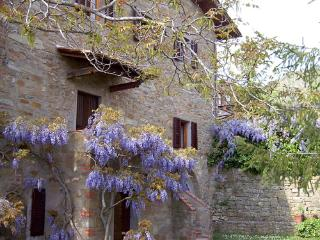Villa Aurora - Code: CV0004, Pian di Sco