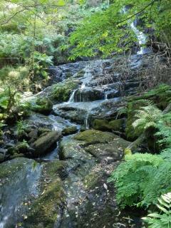Preciosa cascada escondida en un sendero a escasos metros de la casa