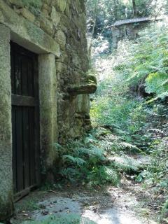 Alrededores de la casa, varios molinos antiguos
