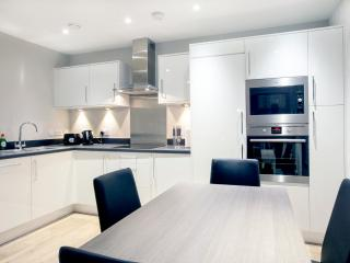 Central London Premium Apartment (Sleeps 3), Londres