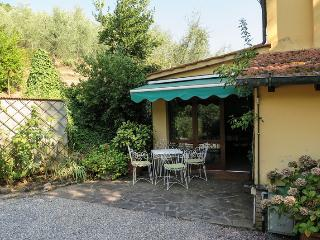 Tuscan country apartament  in a lovely olive grove