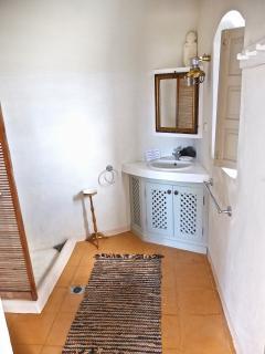 'Sunny Winehouse'  the bathroom