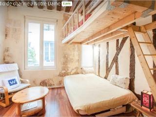 Apartment in Notre-Dame, Paris