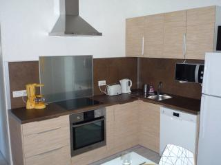 Full equipped kitchen ( oven + 3 induction hubs + dishwasher + kettle + coffee maker )