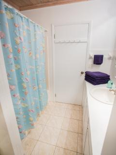 Bathroom Tub/Shower.  Body wash and shampoo provided!