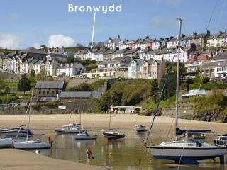 Bronwydd, New Quay