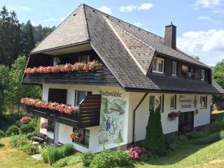 Bachmühle, Menzenschwand