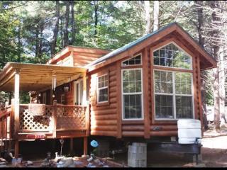 Adirondack style living