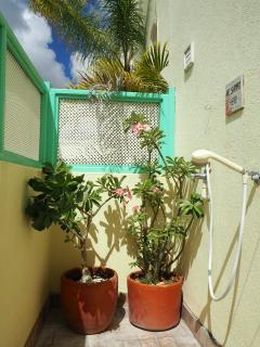Patio next to kitchen with flowers. External shower, a relaxing experience after the beach