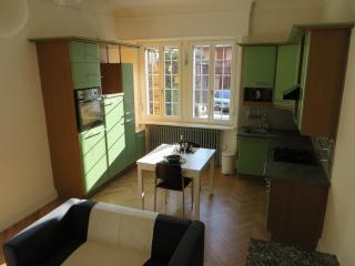 Joli 2 pièces avec garage et jardin, Mulhouse