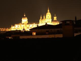 Vistas espectaculares a la Catedral desde la terraza
