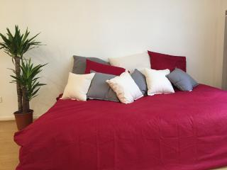 Appartement T1 cosy 4min Matabiau/Capitole, Toulouse