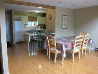 4 Bedrooms next to Camelback Ski & Waterpark, Tannersville
