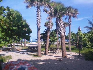 Comfy Condo Hallandale Beach