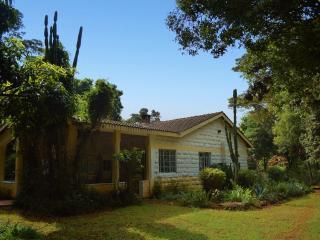 Sunbirds' Glade, Nairobi