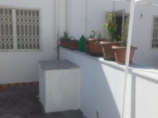 spazio retrostante: vasi con piante aromatiche