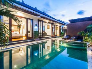 Beautiful Pool Villas For Rent in Seminyak Bali
