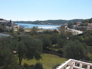 Milena Apartment A in Tisno