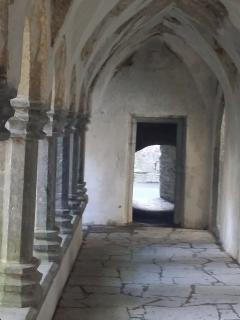 Muckross Abbey interior view