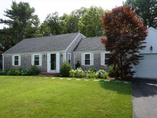 Spice Lane 126764, Osterville