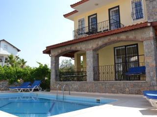 Vine Villa, Fethiye