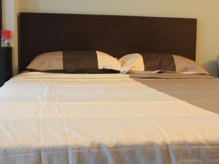 Makati Holiday Rentals 1Br Suites- Greenbelt Area