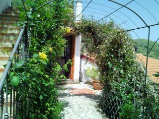 Appartamento Salina monolocale in villa 3 posti, Reitano