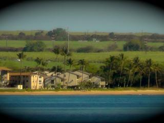 Maui Vacation Rental on the Beach at Ma'alaea