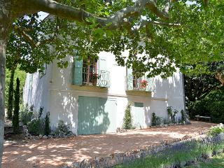 Mas des Lavandes charming house in  Provence
