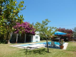 Great family holiday home, with guesthouse, Azeitao