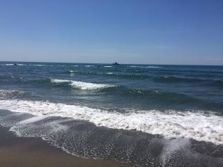 Casa Juana 5 mins walk to Beach & Paloma Park