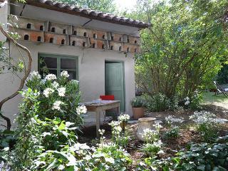 Mas des Lavandes charming house in  Provence