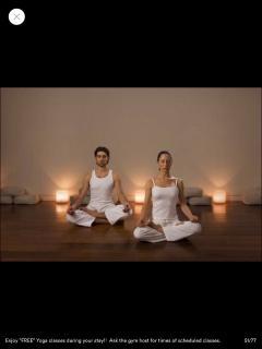 'FREE:  Daily Yoga!