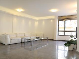 Gorgeous luxury 3BR Bugrashov 44 st, Tel Aviv