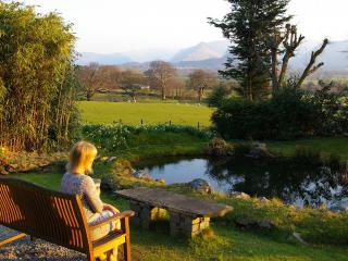 Admiring the view from a bench next to the pond in the garden.