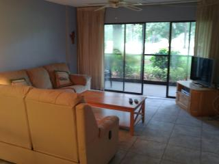 Cove Cay Condo, Clearwater