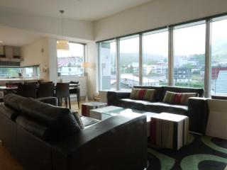 Youtei Tracks - 3 Bedroom Penthouse, Niseko-cho