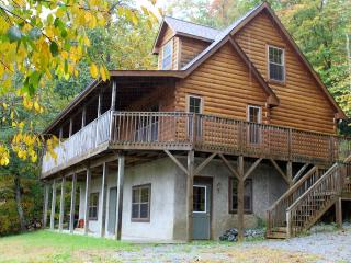 Peaceful Log Cabin 4 BDRM/ 3 Floors Private Quiet, Hendersonville