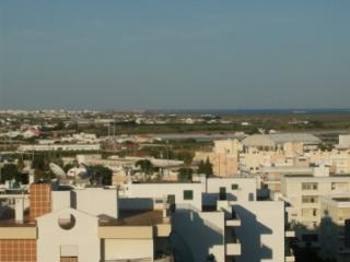 Four Bedroom Apartment in Faro