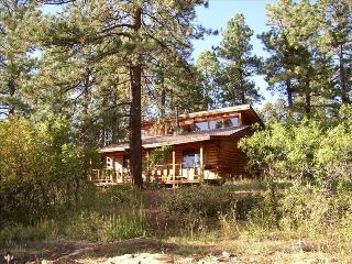La Plata Mountains Cabin - Nestled in the Pines, Mancos