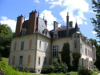 Castle 'des Tertres', luxury but very affordable, Mussy-sur-Seine