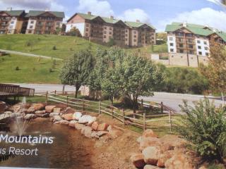 Breathtaking Views/Comfort: 1-2BR Smoky Mtn Condo