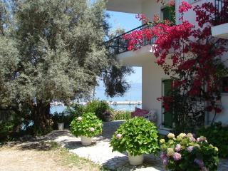Sea front apartments and studios Villa Galanos Nikiana Lefkada ,nice beach