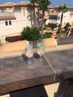 G&T on the Terrace