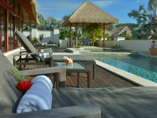Paradise Beach Villa - 2 Bedrooms - Garden, Charlestown