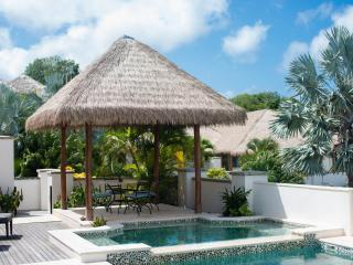 Paradise Beach Villa - 4 Bedrooms - Beach Front, Charlestown